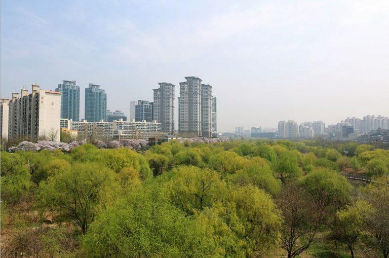 首爾自由行-韓國自由行-韓國旅遊-首爾景點-韓國機票-汝矣島生態公園