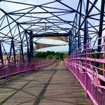 單車輕鬆遊台中:潭雅神綠園道