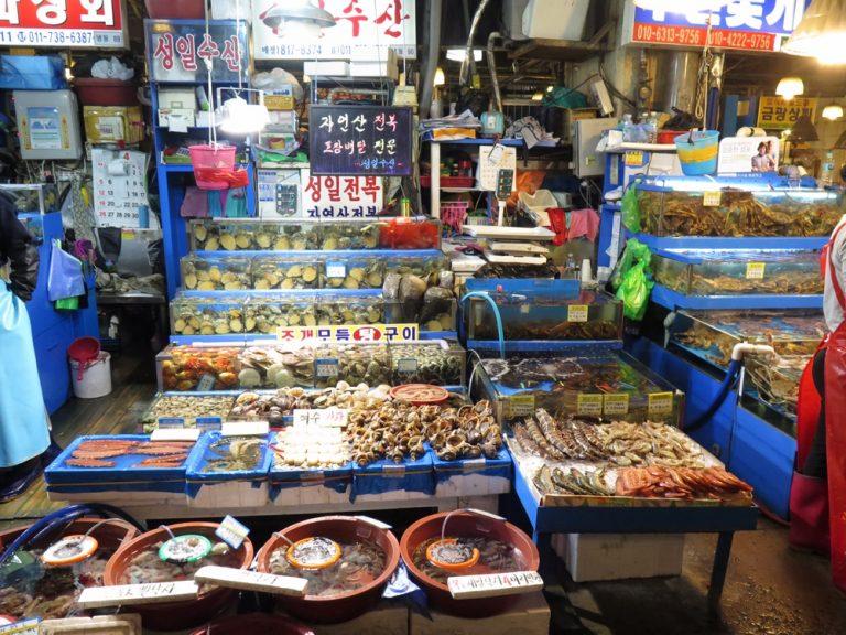 首爾自由行-韓國自由行-漁市場地方很大走在大巷一直都有人向我們推銷