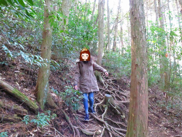 九州自由行-鹿兒島自由行-日本機加酒-輕輕鬆鬆親親大自然