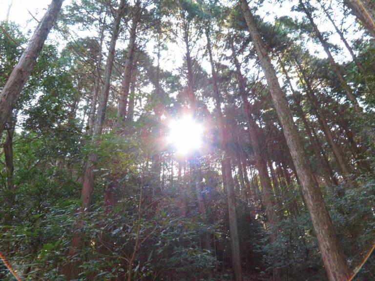 九州自由行-鹿兒島自由行-日本機加酒-這天天氣十分好