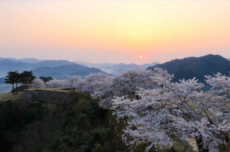 日本自由行-相片來源竹田城跡官方網站
