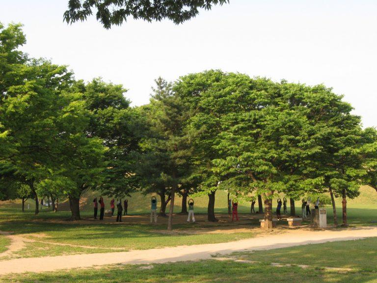 古墳公園散步健身-釜山自由行-韓國自由行