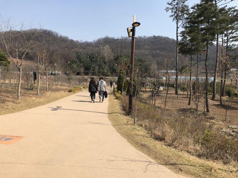 藍色植物園的環境-首爾自由行-韓國自由行-韓國旅遊-首爾景點