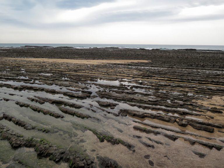 九州自由行-鹿兒島自由行-日本機加酒-沉積岩長期受著太平洋海浪衝擊及侵蝕,形成了獨特的波狀形岩石