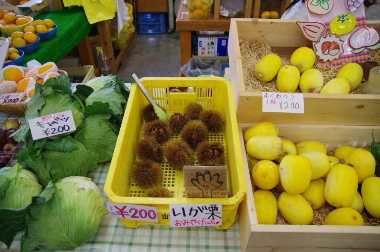 大阪自由行-大阪景點-買到各式各樣的國產蔬果