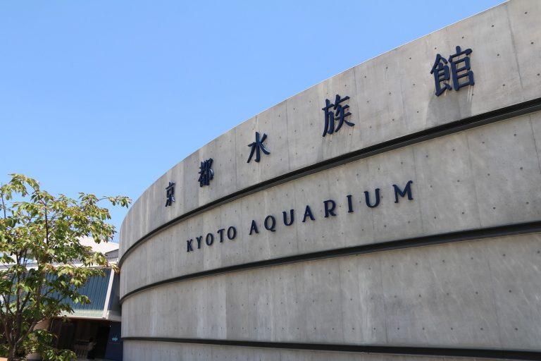 京都水族館-大阪自由行-大阪景點-京都自由行-京都景點