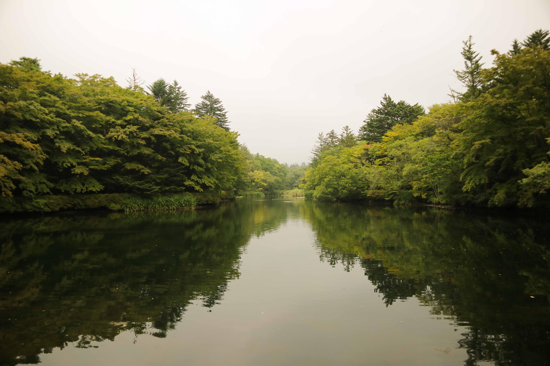 東京自由行-輕井澤雲場池
