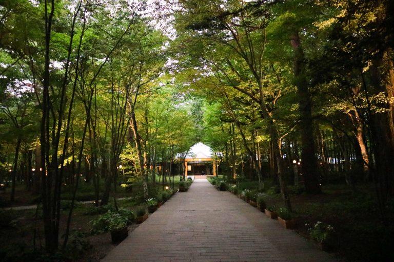 東京自由行-輕井澤教堂
