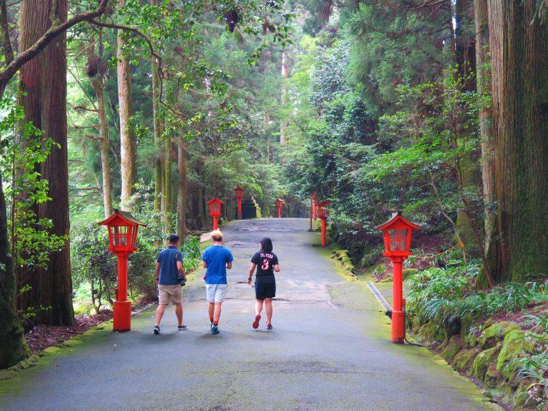 東京自由行-東京必去-東京景點-東京旅遊-沿途滿目皆綠,護眼感強