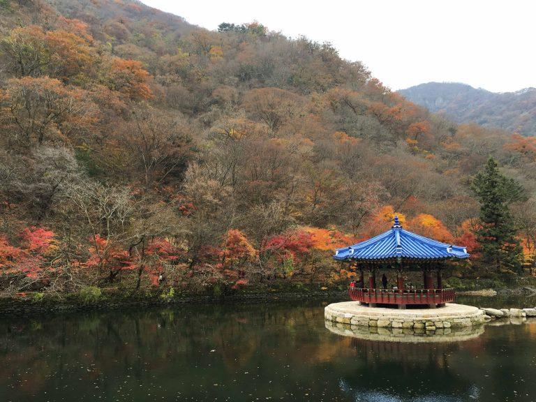 韓國自由行-韓國市區-韓國近郊-首爾好去處-內藏山3