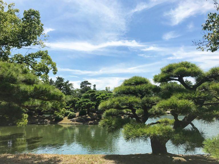開揚的庭園景色令人身心舒暢