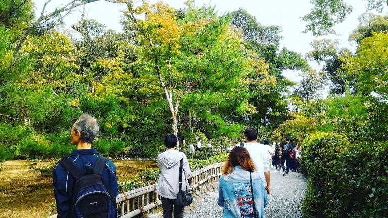 京都自由行-京都景點-京都住宿-大阪自由行-到處都很綠