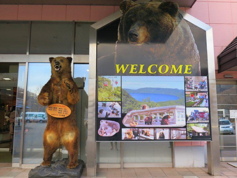 北海道自由行-北海道旅遊-北海道旅遊景點-為把握時間,我們先到登別世界最大的棕熊牧場