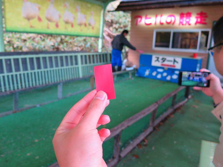 北海道自由行-北海道旅遊-北海道旅遊景點-一場來到當然要試試運氣