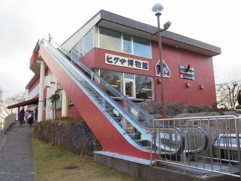 北海道自由行-北海道旅遊-北海道旅遊景點-纜車旁邊世界唯一的棕熊博物館