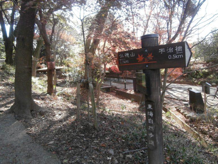 大阪自由行-大阪景點-這裡是紅葉聖地,亦是東海自然步道其中一段