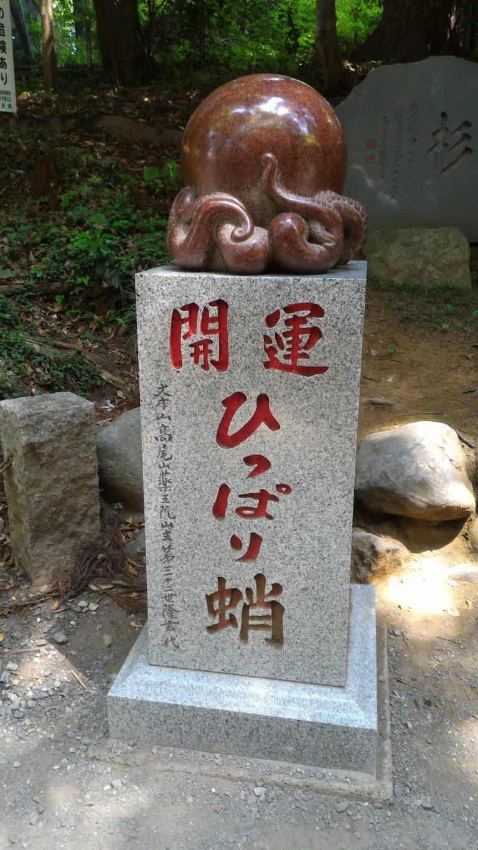 東京自由行-東京機票-東京旅遊-東京景點-東京住宿-東京必去-傳說摸樹根可以開運,不過為免摸壞老樹,特設章魚石雕供人任摸