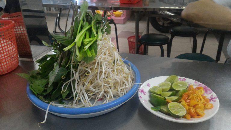 越南自由行-高聳入雲的芽菜