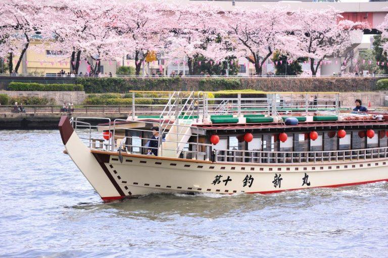 【東京賞櫻趣】搭乘屋形船享用豪華午餐・賞櫻半日遊