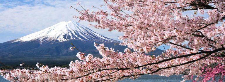 【東京富士山一日遊】淺間神社、河口湖、忍野八海、御殿場 Outlet(新宿出發)