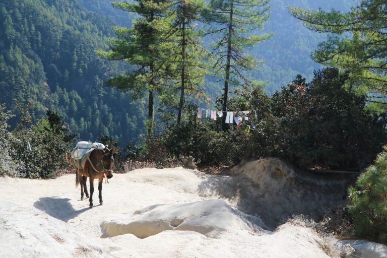不丹旅遊-不丹景點-5
