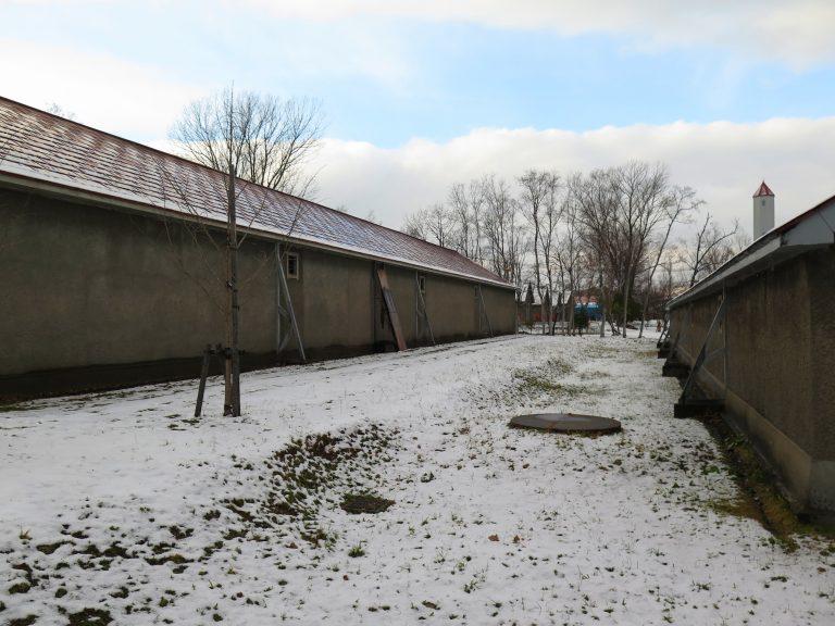 北海道自由行-北海道旅遊-北海道旅遊景點-雪落了一段時間,終於停了