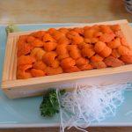北海道自由行-北海道旅遊-北海道旅遊景點-必食馬糞海膽,海膽甜度高,一入口已散發新鮮的香味,是幸福的味道