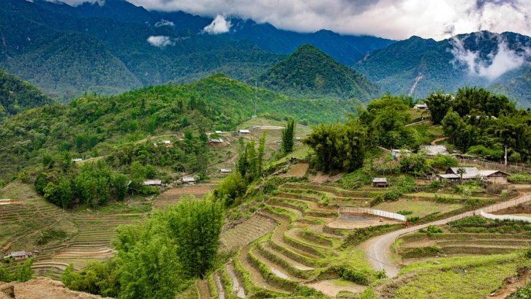 越南自由行-沙壩梯田