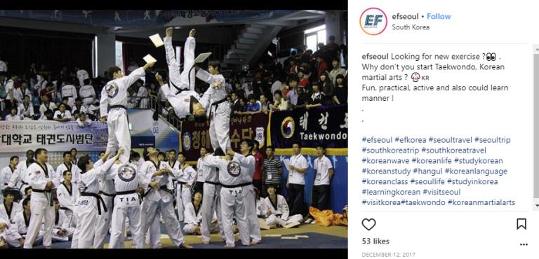 taekwondo-ef-goflyla