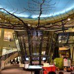 鳥取自由行-一進紀念館便有一棵直徑長達20米,梨樹界的巨無霸迎接我們