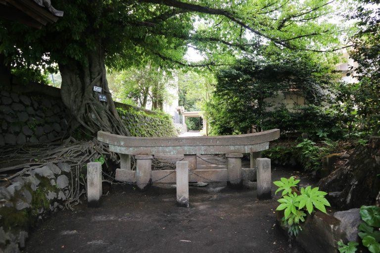 Sakurajima-15