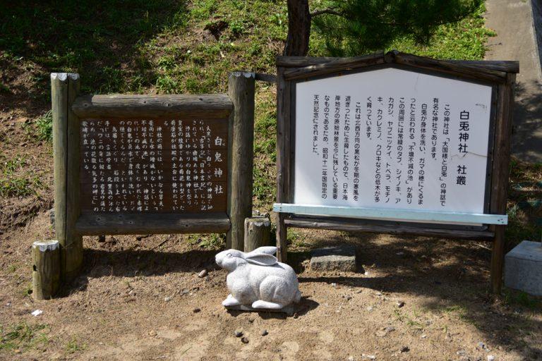 鳥取自由行-白兔神社的傳說故事