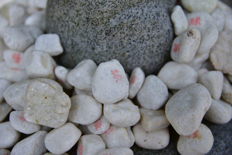鳥取自由行-每隻白兔都被神社內販售的「結び石」圍繞著