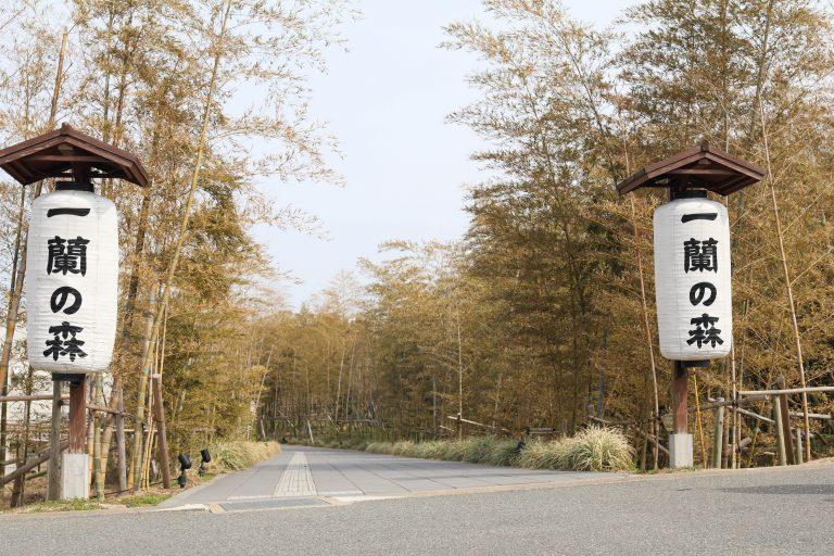 Itoshima-017