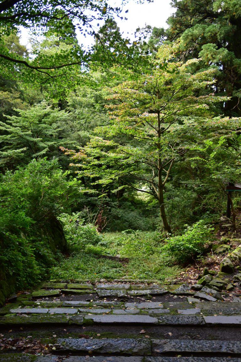 鳥取自由行-隱蔽的山路