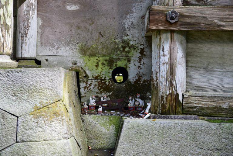 鳥取自由行-是狐仙的洞嗎