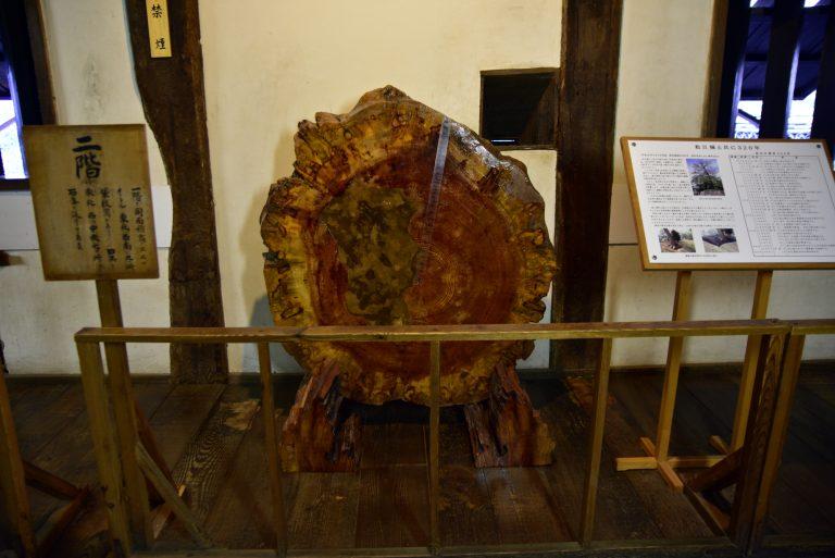 松江城-建造天守選用的木材
