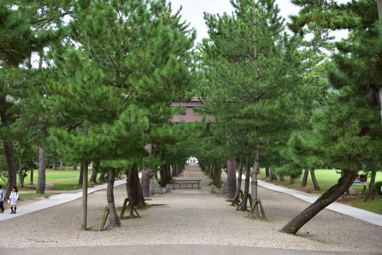 出雲大社-由入口到神殿也有一定的距離