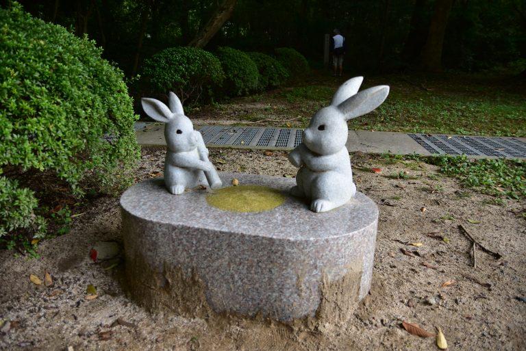 出雲大社-是由白兔神社那邊走過來的嗎