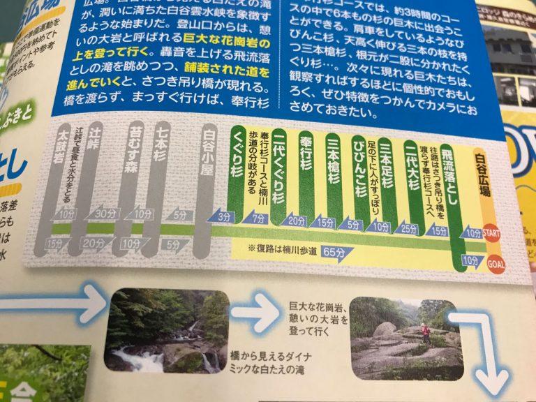 屋久島交通-白谷雲水峽路線