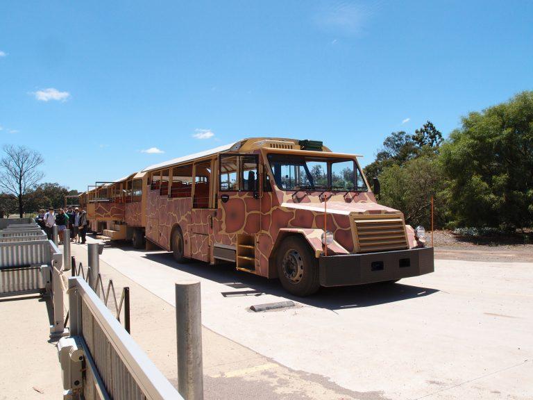 墨爾本景點-墨爾本自由行-melbournetour-登上叢林巴士,準備走進非洲郊野