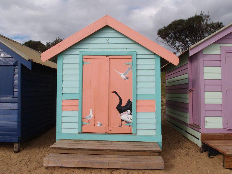 墨爾本景點-墨爾本自由行-melbournetour-這小屋以澳洲的海鳥作主題