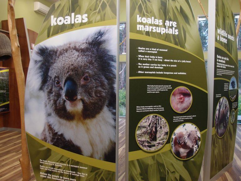 墨爾本景點-墨爾本自由行-melbournetour-保育中心保留了澳洲原生的高聳尤加利樹,讓遊客在叢林中尋找樹熊的綜影