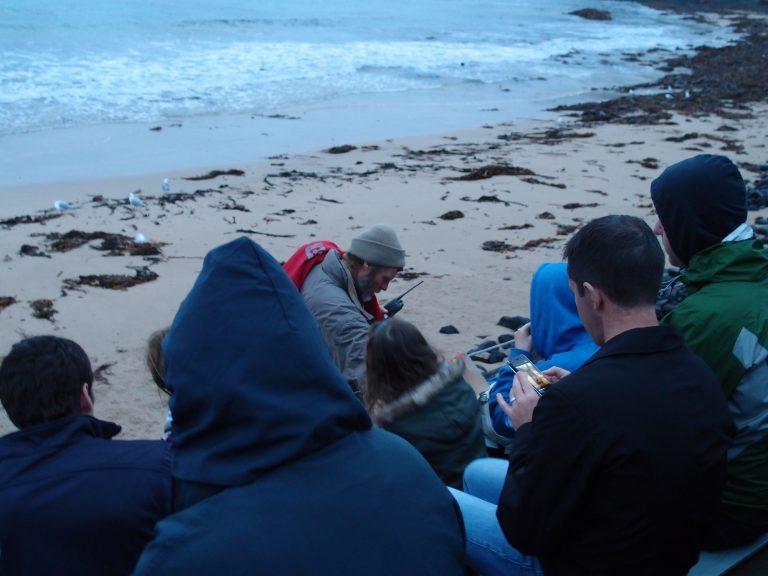 墨爾本景點-墨爾本自由行-melbournetour-時間一分一秒過去,大家一邊硬著頭皮頂著海邊的強風,一邊聚精會神地留意著沙灘的情況