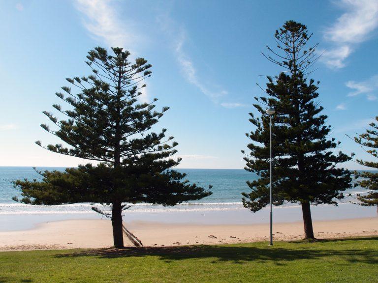 Melbournelocaltour-Melbourne天氣-澳洲旅遊推薦-到訪那天天氣極好