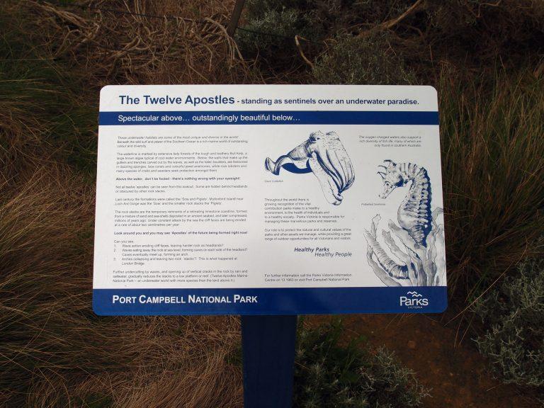 Melbournelocaltour-Melbourne天氣-澳洲旅遊推薦-十二門徒石附近的海洋生物