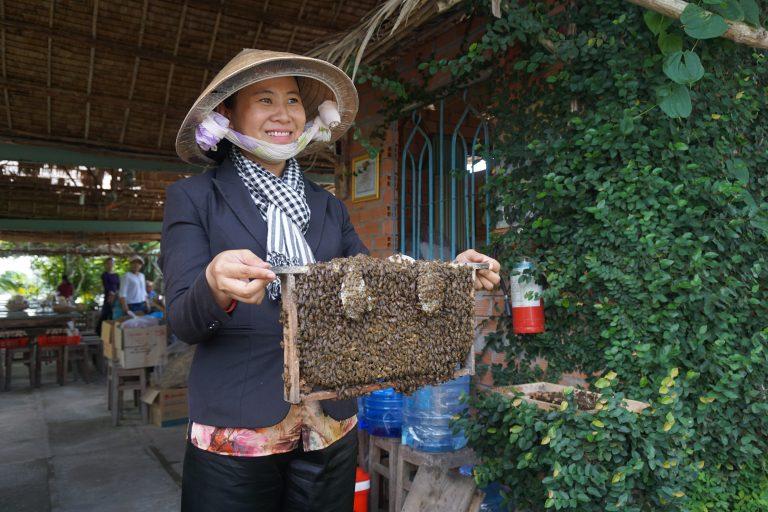 mekong-river-bees-goflyla