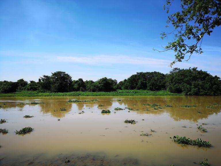cuchi-river-goflyla