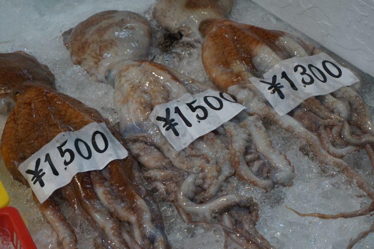 zuzuche-car-rental-karochonishi-squid-crab-goflyla